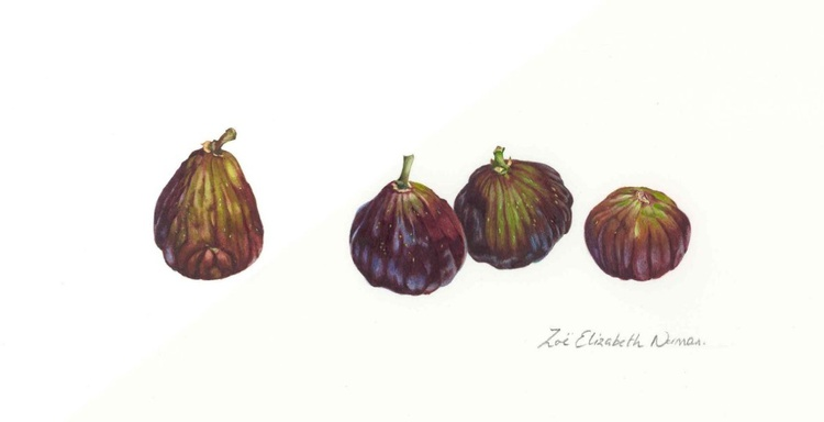 Four Figs - Image 0