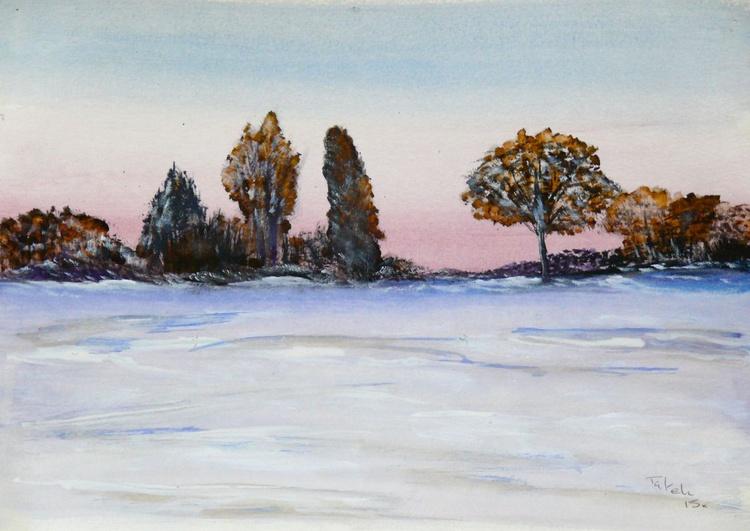 [238] Winter Fields - Image 0