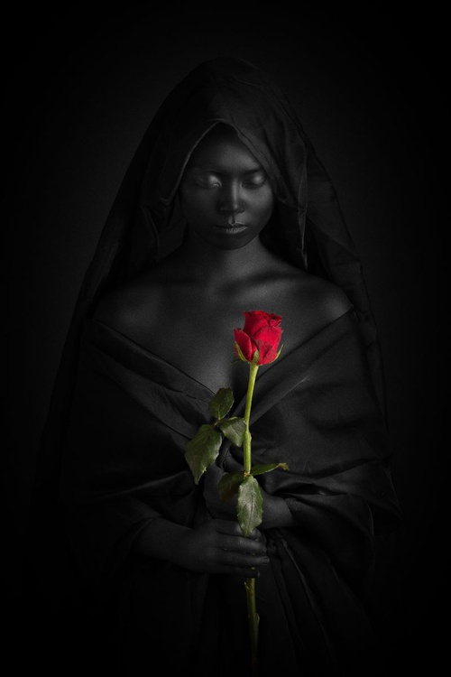 The Rose of Paracelsus - Image 0