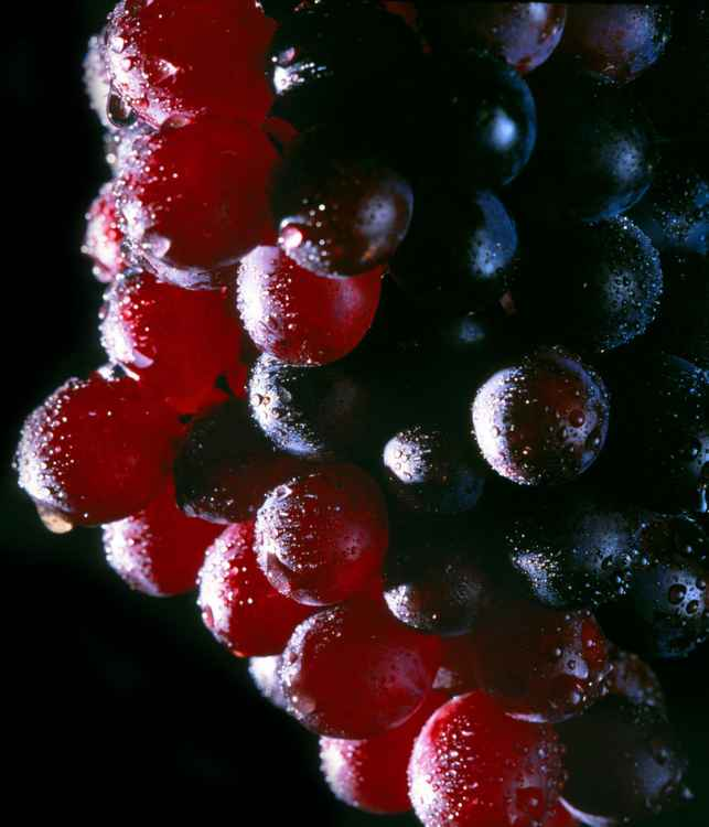 Red Grapes -