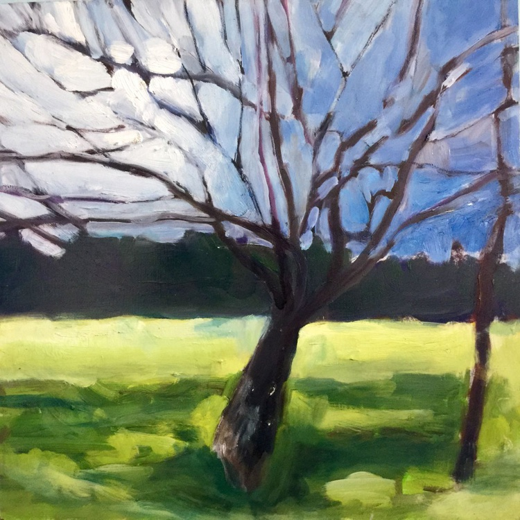 Portrait of a Mulberry Tree, Early Spring - Image 0