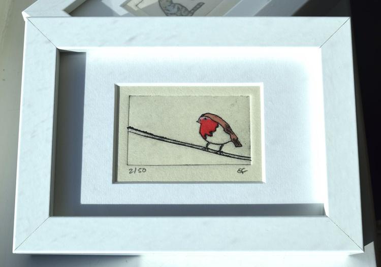 Robin - small framed print - Image 0