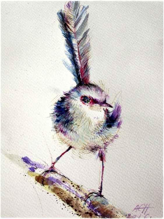 fairy wren bird watercolour signed