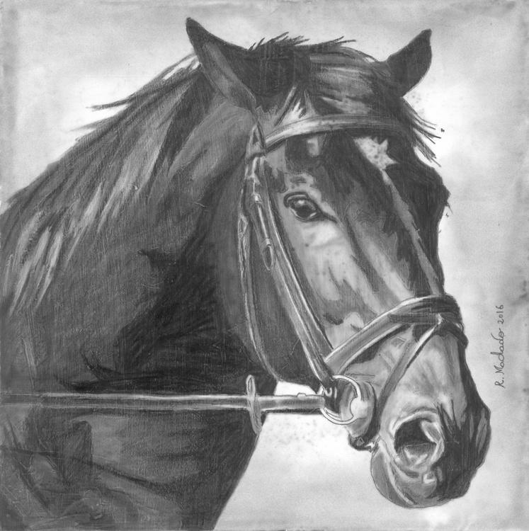 horse art - Image 0
