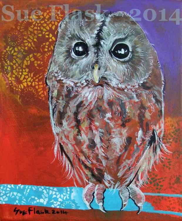 Owl - 2014