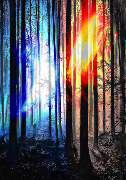 Enchanted - Image 0