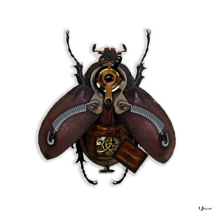 Steampunk Beetle - Limited Edition of 10 - Image 0