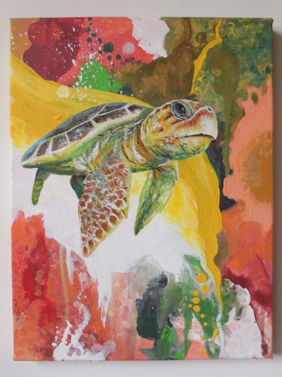 Sea Turtle Collection: 3 - Image 0