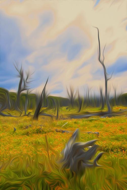 Emerging Trunks II - Image 0