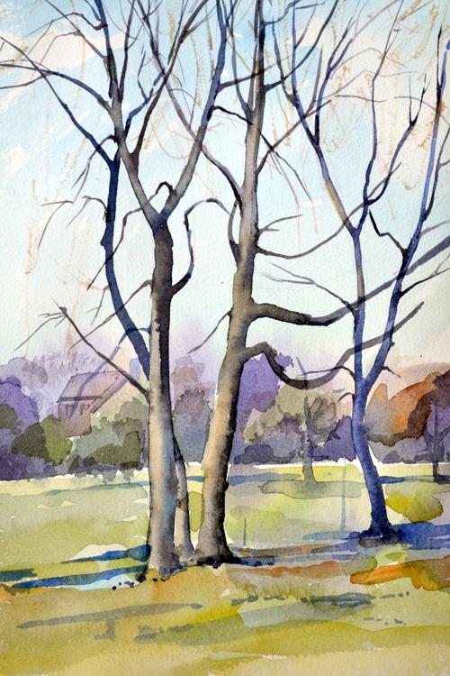 Trees. - Image 0