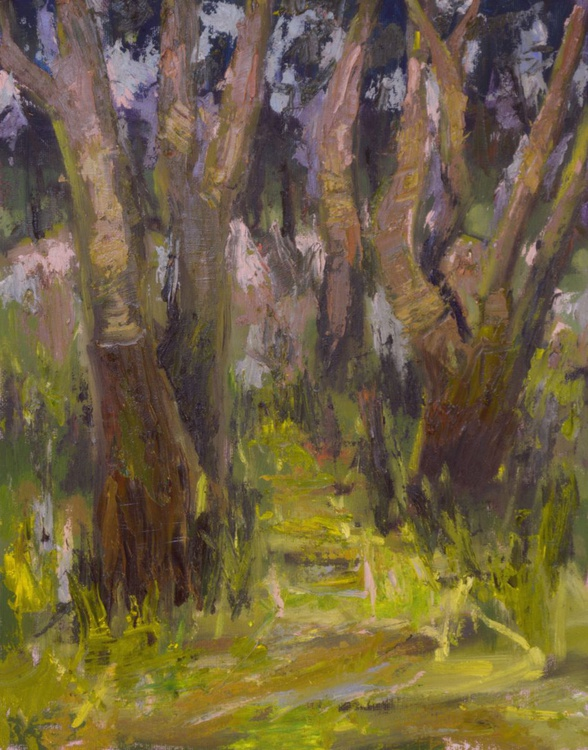 Enchanted Forest - Image 0