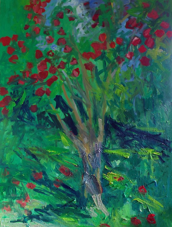 Apple tree in the sunshine - Image 0