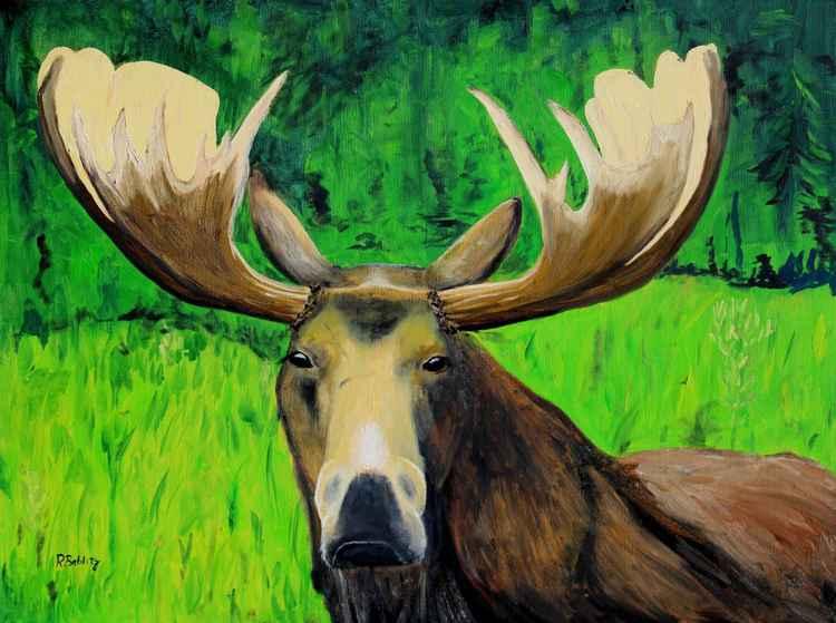 Loose Moose -