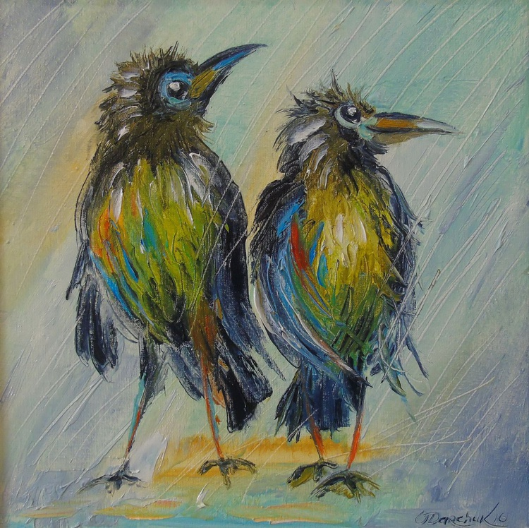 The long-awaited rain for the crows - Image 0
