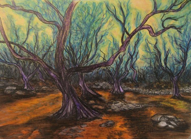 olive grove - Image 0