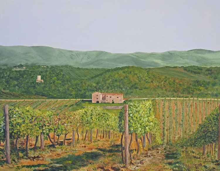 San Sano Vineyard