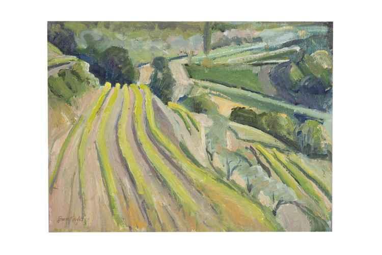 Vine Terraces Suzette