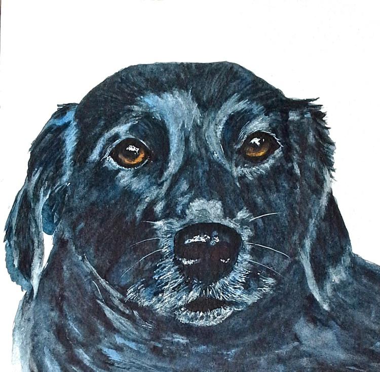 Labrador dog - Image 0