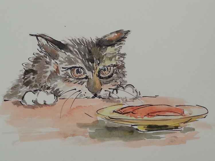 the hungry cat -