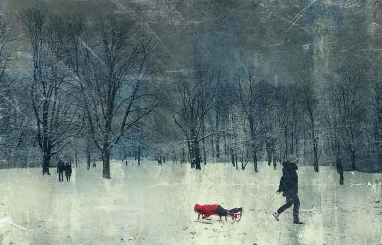 sleigh large -