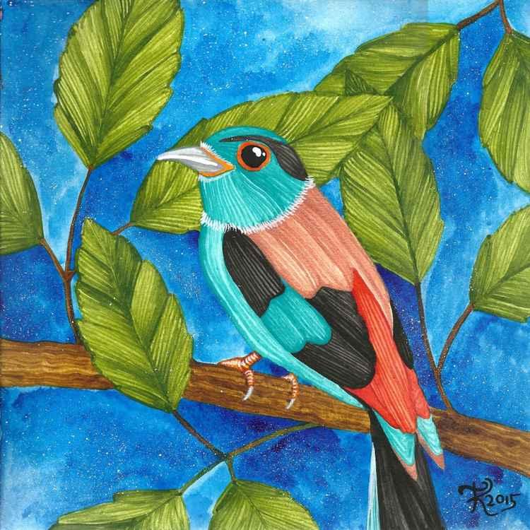 Copperwing Bird