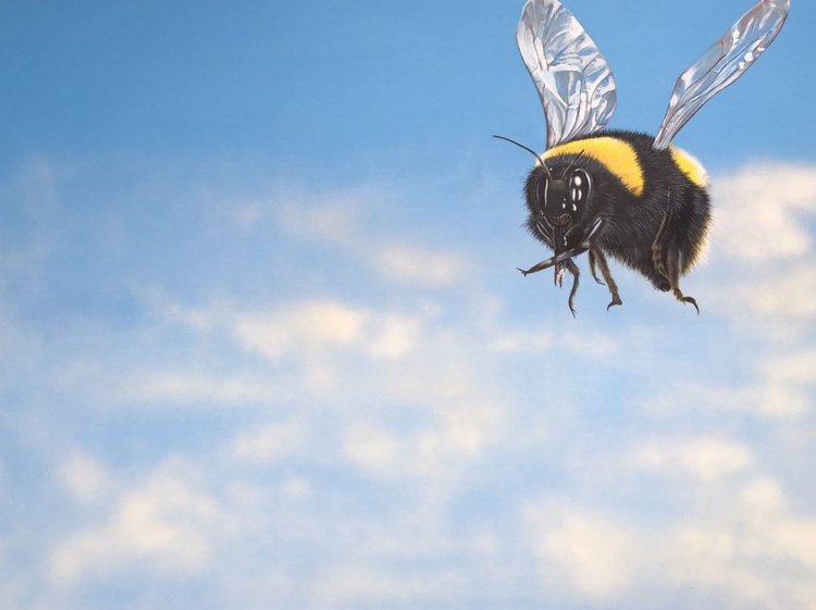 Summer: Flight Of The Bumble Bee - Image 0