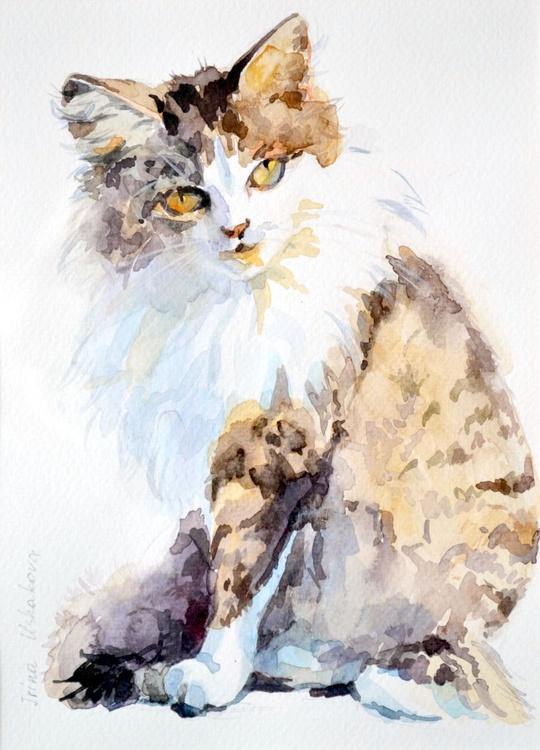 Cat. - Image 0