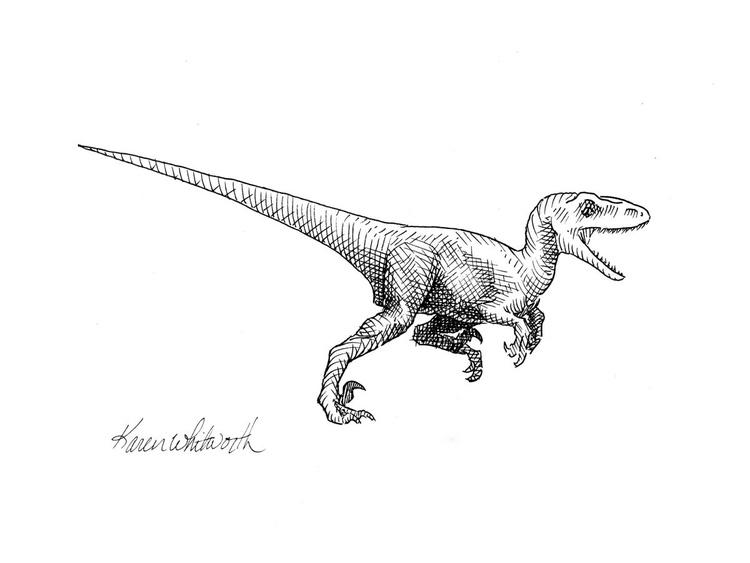Velociraptor - Dinosaur Ink Drawing Illustration - Image 0
