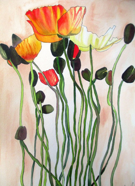 Orange Poppies - Image 0
