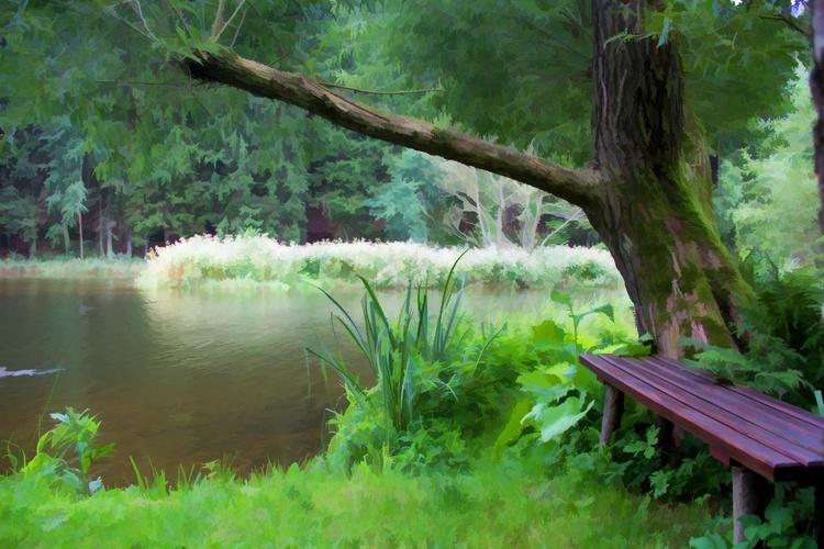 Restful haven - Image 0