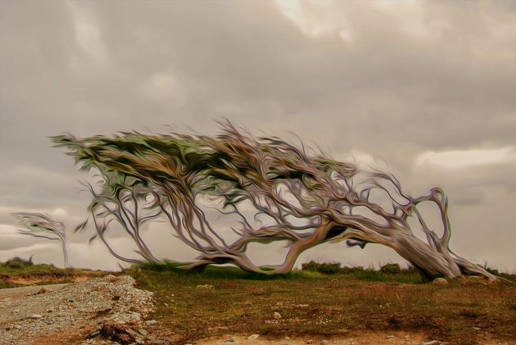 Reclined Turbulence - Image 0