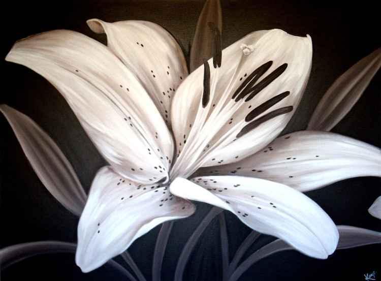 Cappuccino Lily -