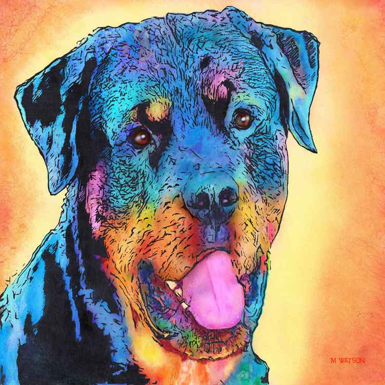 Rottweiler Dog - Limited Edition -