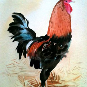 Rooster in the barn by Mary Stubberfield