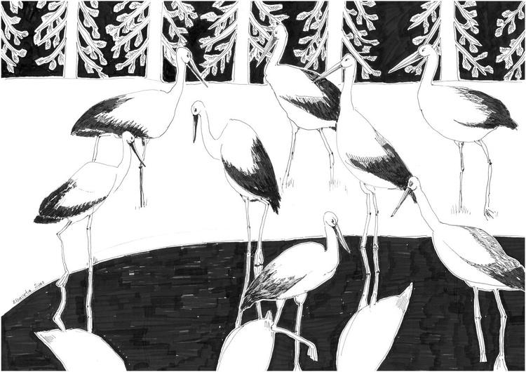 STORK BIRDS - Image 0