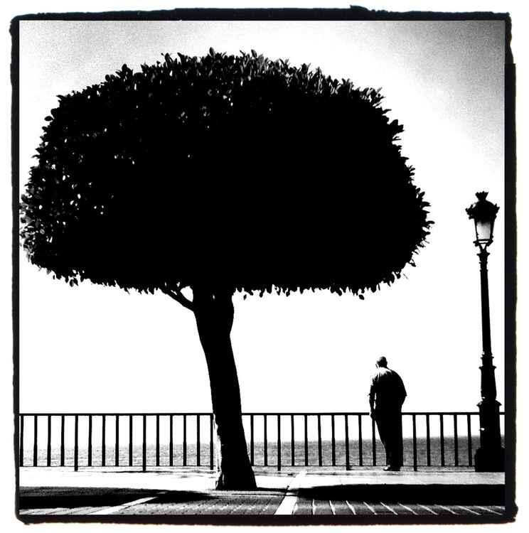 Marbella Sunday Afternoon