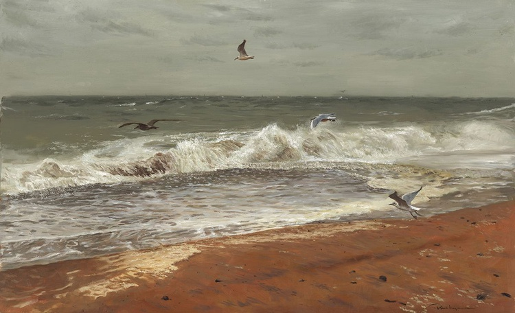 Gulls in a Storm - Image 0
