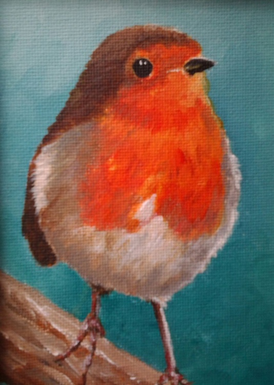 """MY GARDEN ROBIN"", acrylic painting 'floating' in a white frame - Image 0"