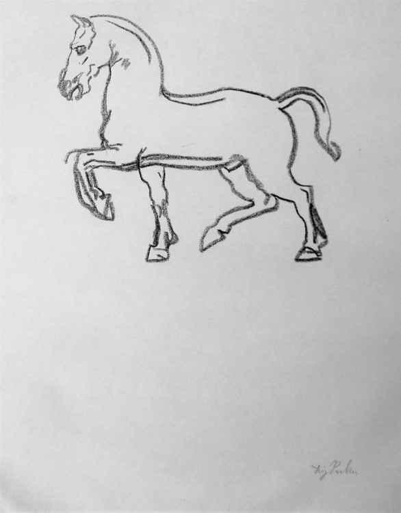 Horse Study.
