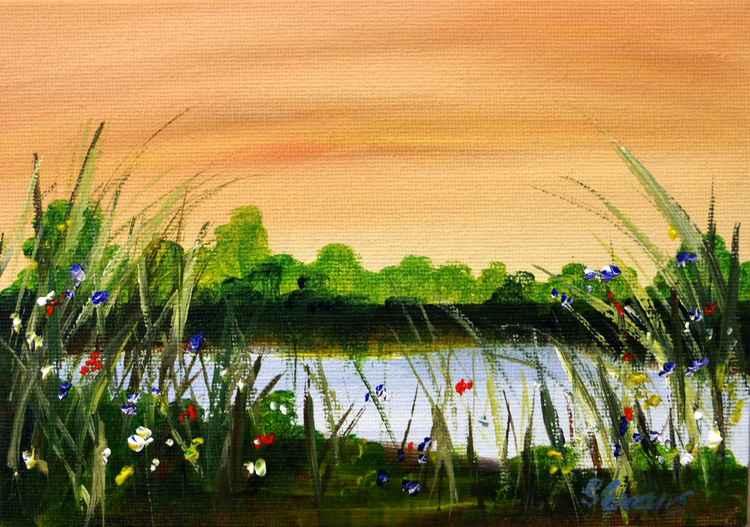 River wild 3 -