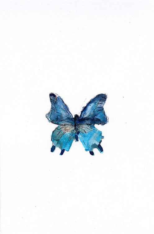 Butterfly 1015B1