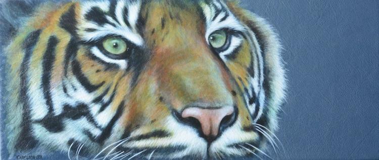 Cats Eyes: Tiger - Image 0