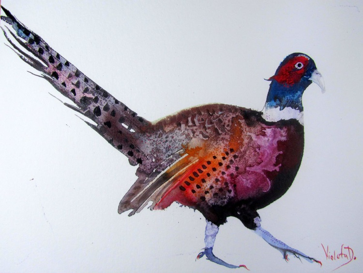 The Pheasant - Image 0