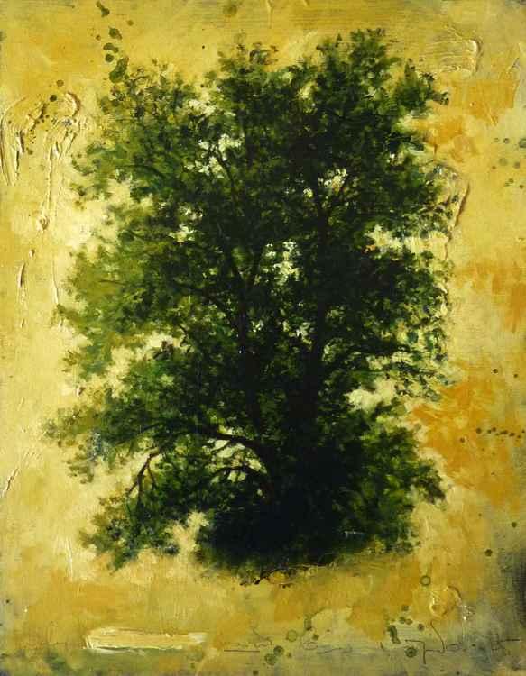 Herbarium_020