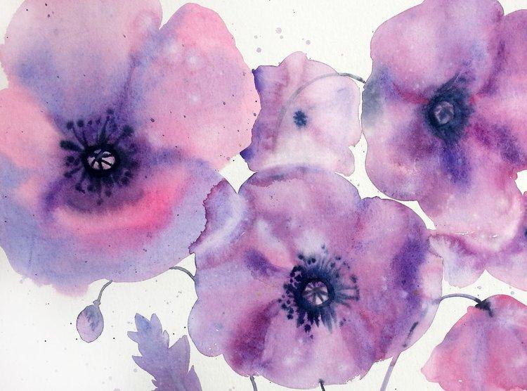 purple poppies violet watercolor flowers vio artfinder