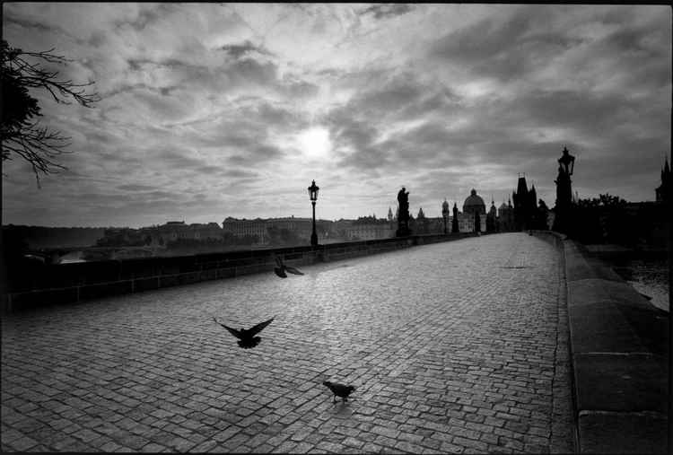 Charles Bridge :  Prague