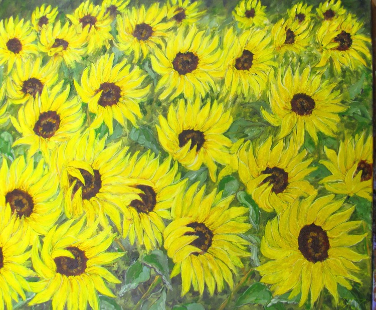 Sunflower Field - Image 0