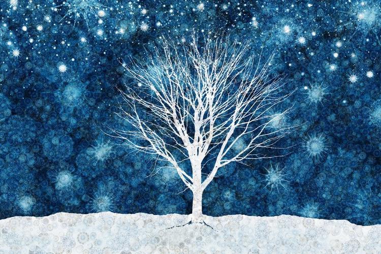 Winter Starlight (Ltd Edition of only 20 Fine Art Giclee Prints from original artwork.) - Image 0