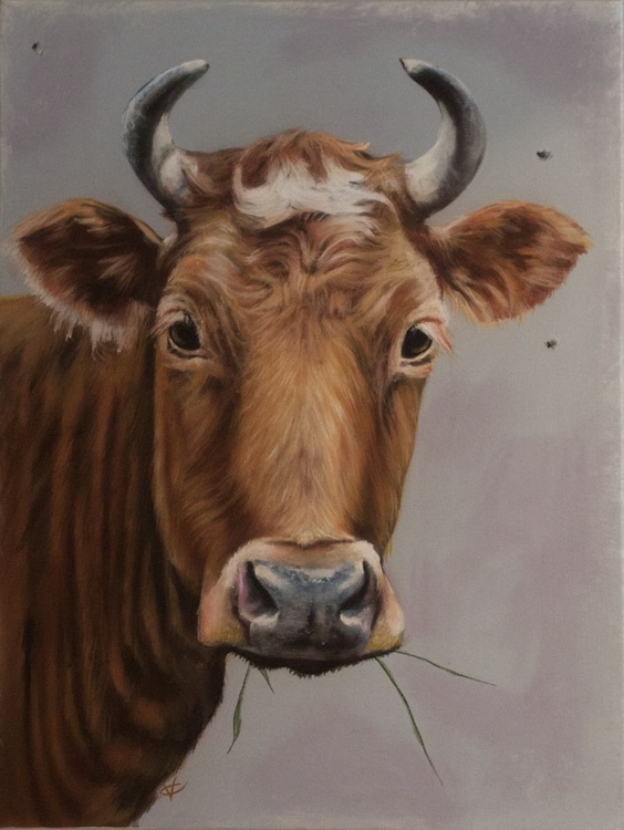No Flies on me, Cow painting, animal art by Victoria Coleman - Image 0