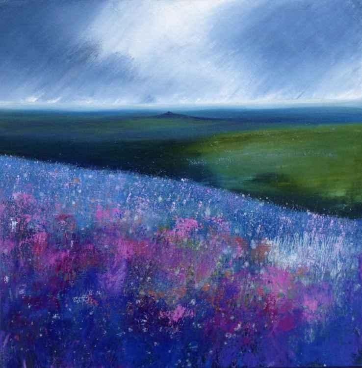 Dartmoor Hues -